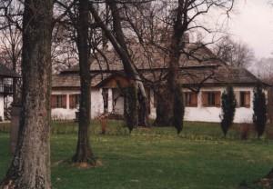 Dwór z drzewem na pierwszym planie